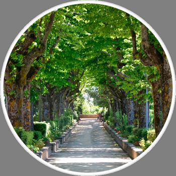 Parco Colle Celeste